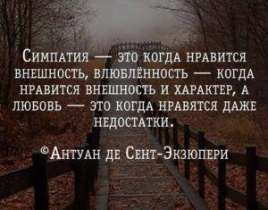 Несколько метких жизненных цитат