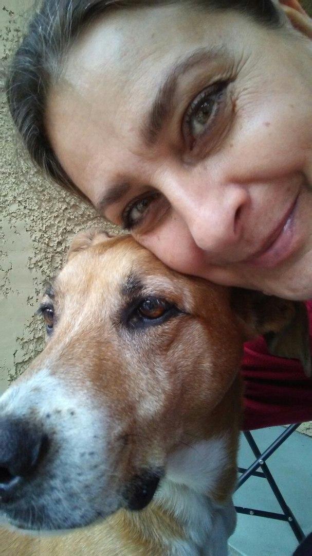 «Дайте мне самого несчастного и ненужного пса!» — попросила девочка. Ребёнок выбрал собаку Сердцем, и не зря!