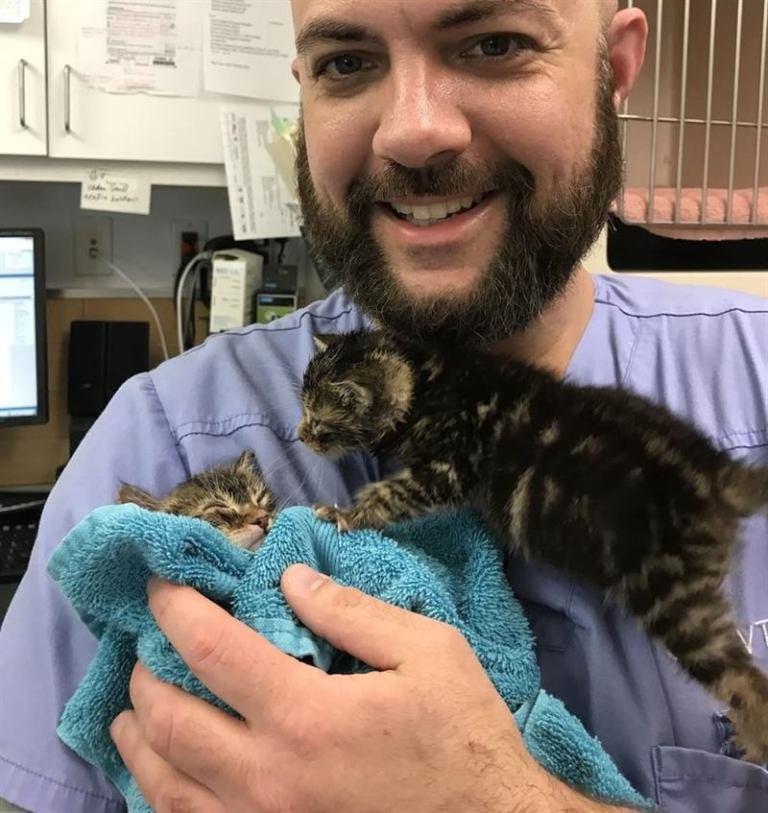 Ветеринару принесли трех котят, и они решили, что он – их мамочка