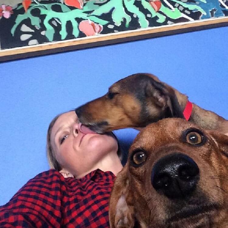 28 забавных и трогательных фотоисторий из жизни собак